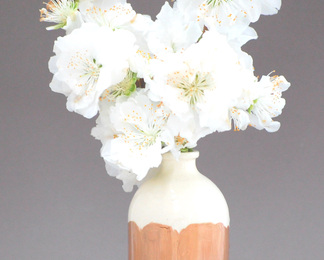 Minimalist White and Copper Vase