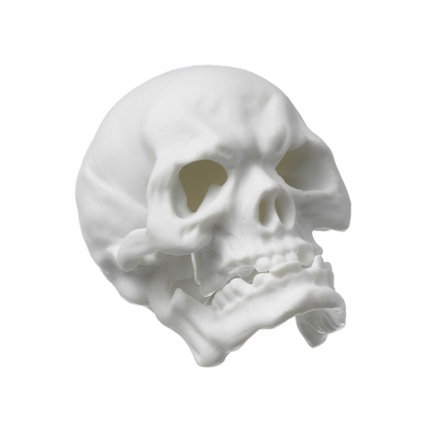 18895_skull_small_white_bis_copy_main